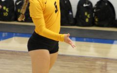 Volleyball ends season in Bi-district loss