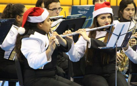 Band concert entertains large crowd