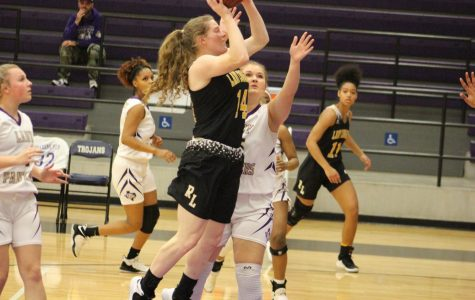 Lady Cougars end season with a loss in bi-district play