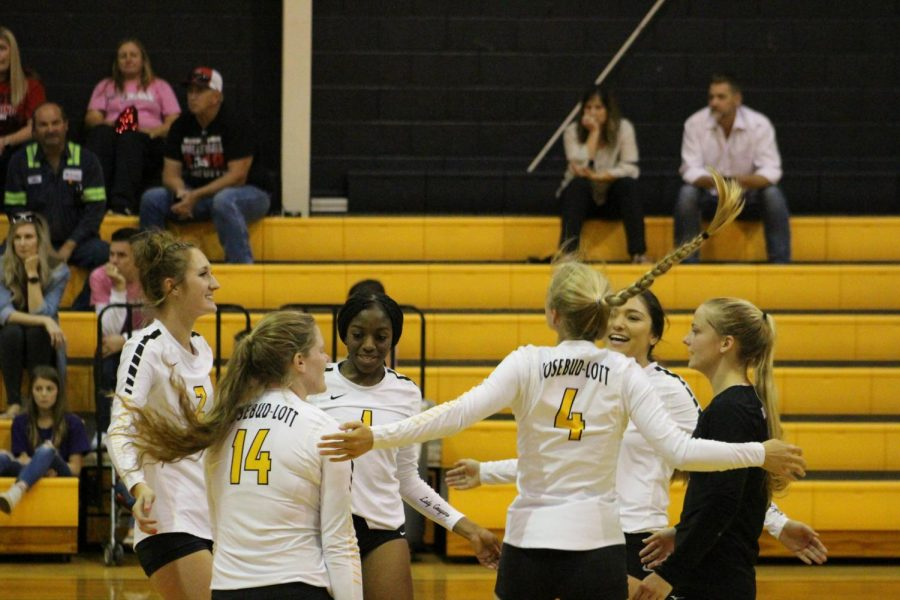 Cougar Volleyball Headed to Regional Finals
