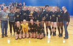 Cougar Volleyball Advances to Area Playoffs